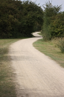 photo of good path